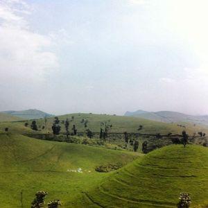 Kitchanga hills